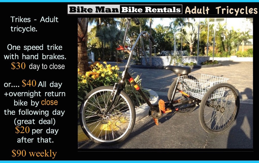 Adult Tricycle Bike Rentals In Key West Bikeman Bike